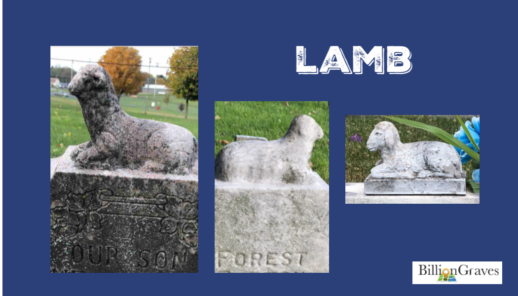 lamb, sheep, cemetery statue, gravestone, BillionGraves, d, lamb, grave, genealogy