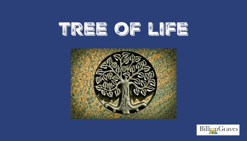 tree of life, cemetery symbol, gravestone, BillionGraves, tree of life