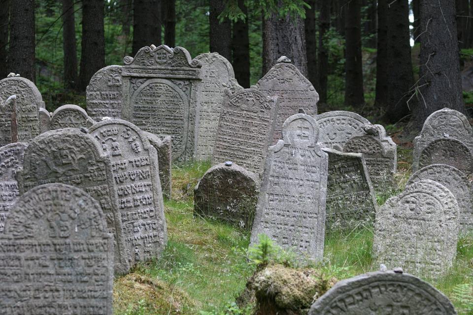 BillionGraves, Jewish, genealogy, family history, GPS, BillionGraves app, Israel, Jew, Hebrew, cemetery, grave, gravestone, graves in forest