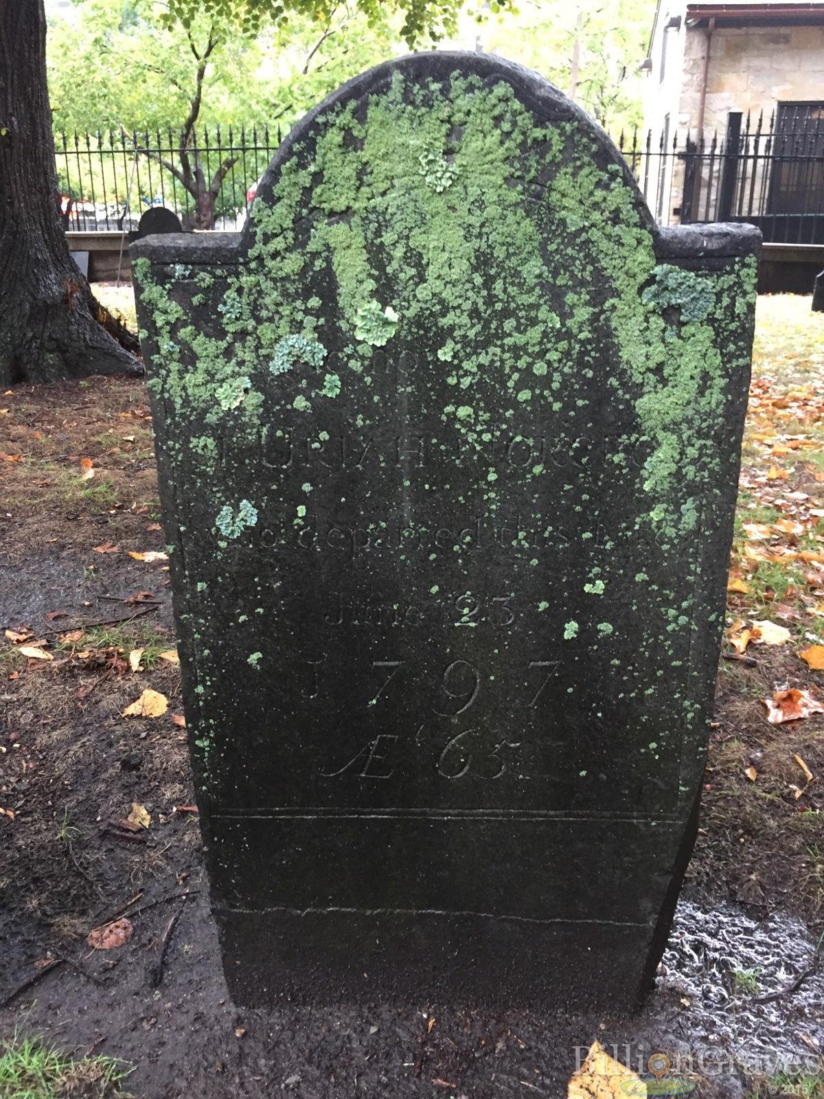 BillionGraves, gravestone, grave, damaged gravestones, cemetery, family history, ancestors, community service project, JustServe, BillionGraves app, ivy, plant growth, JustServe, lichen