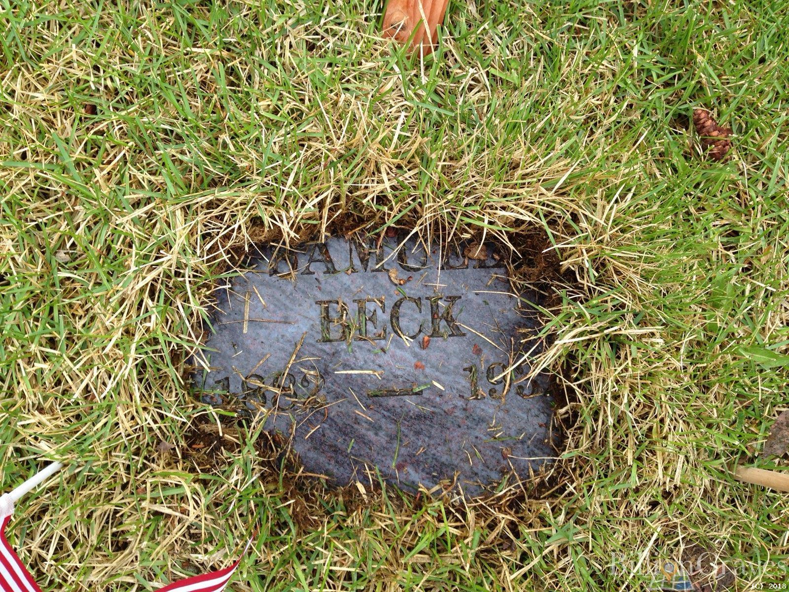 BillionGraves, gravestone, grave, damaged gravestones, cemetery, family history, ancestors, community service project, JustServe, BillionGraves app, Beck, birth, death
