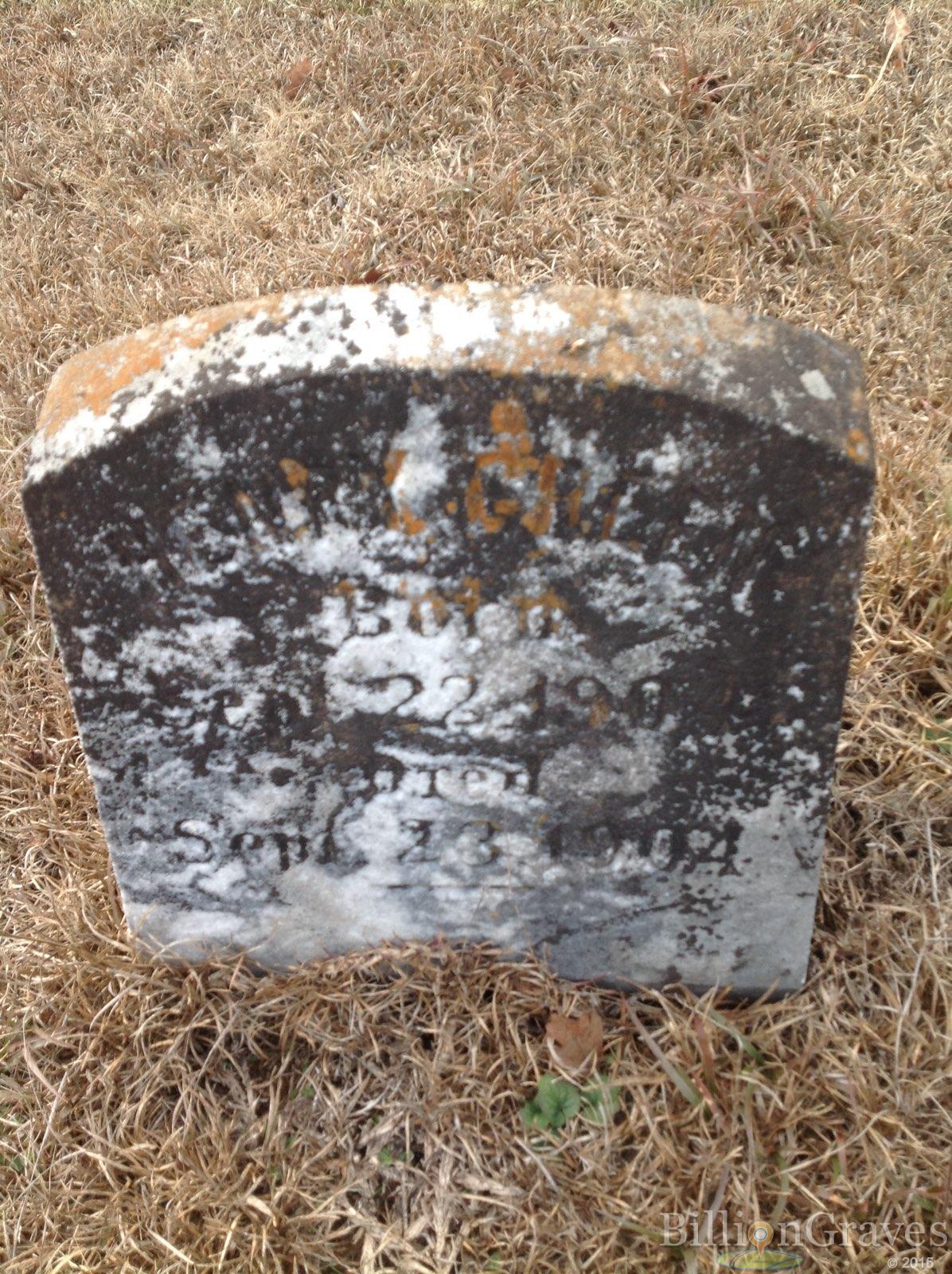 BillionGraves, gravestone, grave, damaged gravestones, cemetery, family history, ancestors, community service project, JustServe, BillionGraves app, ivy, plant growth, alabama, JustServe