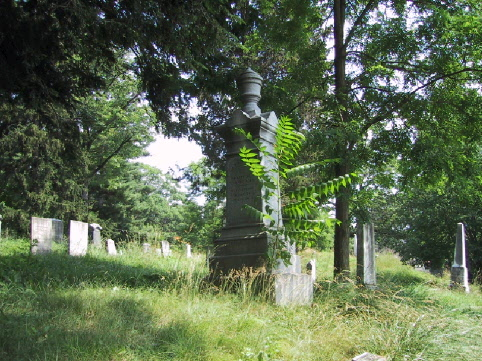 BillionGraves, gravestone, grave, damaged gravestones, cemetery, family history, ancestors, community service project, JustServe, BillionGraves app, ivy, plant growth, JustServe, ithaca, new york
