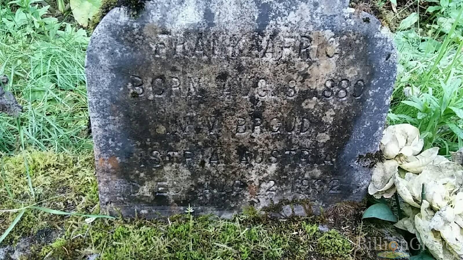 BillionGraves, gravestone, grave, damaged gravestones, cemetery, family history, ancestors, community service project, JustServe, BillionGraves app, ivy, plant growth, JustServe, moldy grave, plants