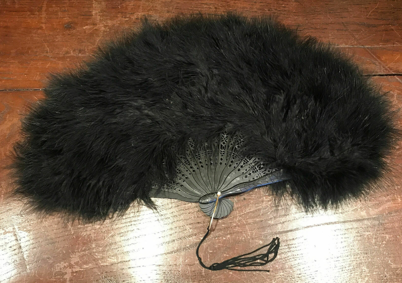 feathers, fan, BillionGraves, ancestors, family history, Victorian era, Victorian mourning clothes, funeral. mourning, cemetery, grave, GPS, cemetery documentation, gravestone photos, ostrich feathers