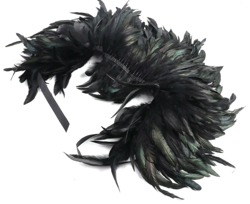 ostrich feather cape, BillionGraves, ancestors, family history, Victorian era, Victorian mourning clothes, funeral. mourning, cemetery, grave, GPS, cemetery documentation, gravestone photos