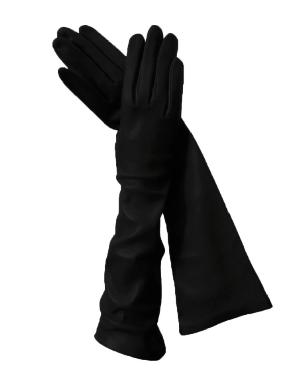 BillionGraves, ancestors, family history, Victorian era, Victorian mourning clothes, funeral. mourning, cemetery, grave, GPS, cemetery documentation, gravestone photos, black leather gloves